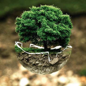 """""""Schrei der Erde"""": Feigenblatt Klimawandel"""